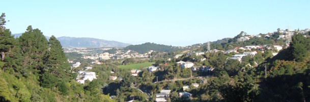 Wellington suburbs